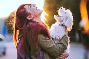 Tierkommunikation - Gefühle lesen