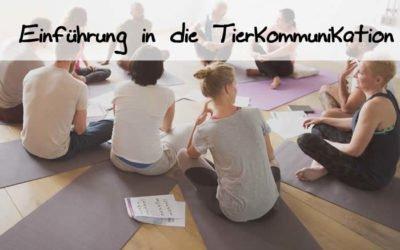 Seminar I – Intensivkurs Einführung in die Tierkommunikation
