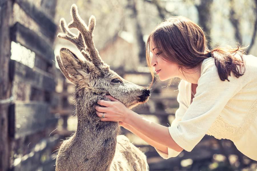 Wie du mit Hilfe von Tierkommunikation mehr Harmonie in deinen Alltag mit deinem Tier bringen kannst