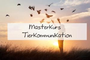 Ausbildung zur Tierkommunikatorin