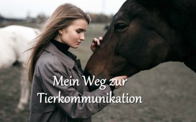 Mein Weg zur Tierkommunikation
