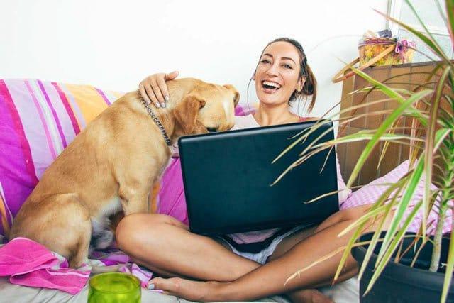 """Onlinekurs """"Einstieg in die Tierkommunikation"""" - 5 Webinare jeweils abends 1"""
