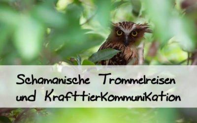 Modul 3 – Schamanische Techniken für die Tierkommunikation