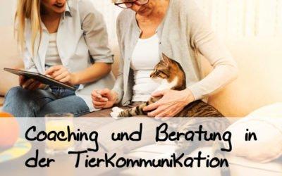 Seminar IV – Beratung und Coaching von Mensch und Tier