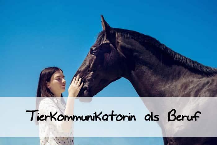 Seminar VI – Tierkommunikatorin als Beruf!