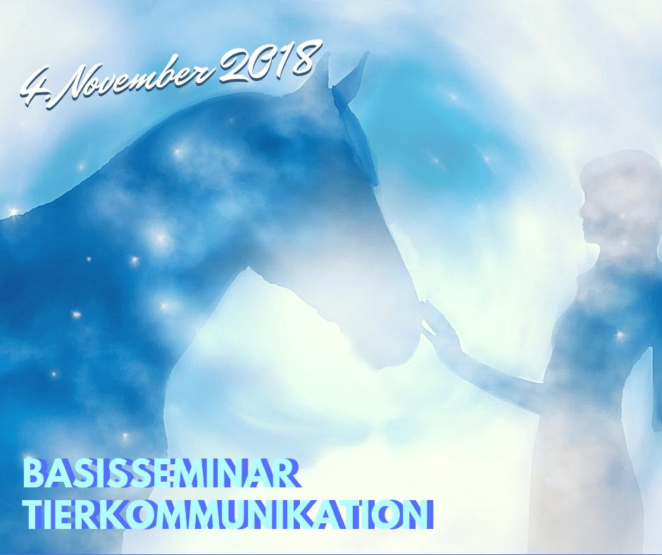 Basisseminar Tierkommunikation in Huttange (Luxemburg) am 4.11.2018 1