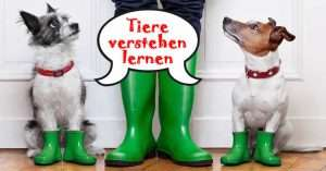 Tierkommunikation Leverkusen