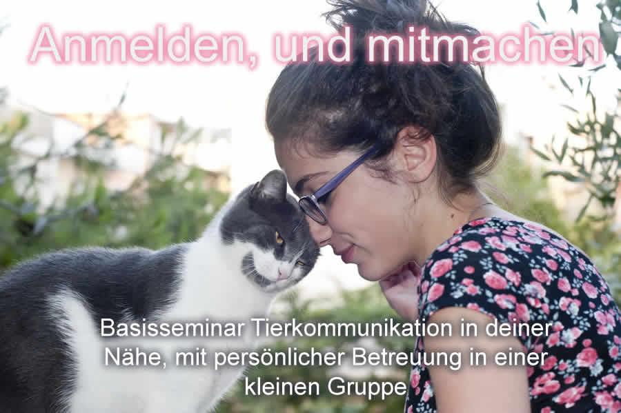 Basisseminare Tierkommunikation Trier 1
