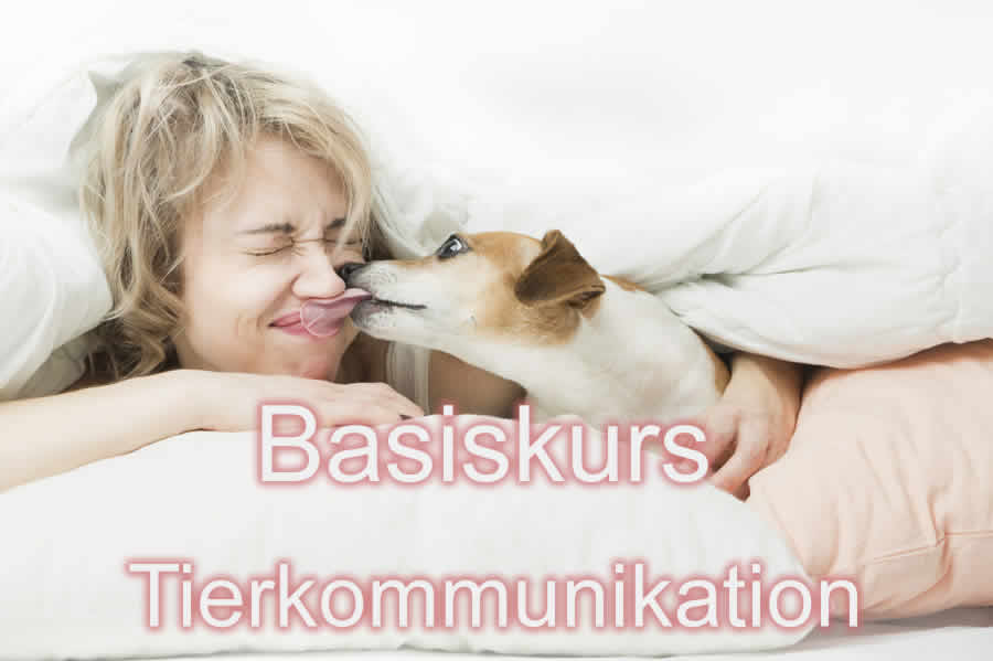 Basisseminare Tierkommunikation Trier 3