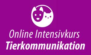 Online Intensivkurs Tierkommunikation 1