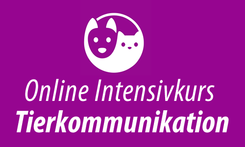 Online Intensivkurs Tierkommunikation 3