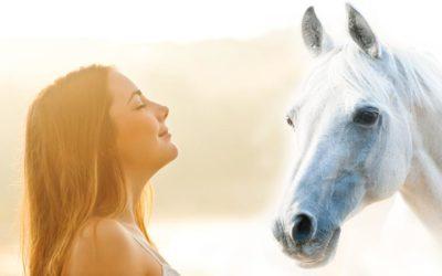 Die Sprache der Tiere sprechen lernen – früher und heute